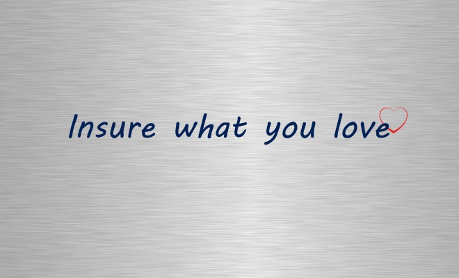 Insure what you love banner